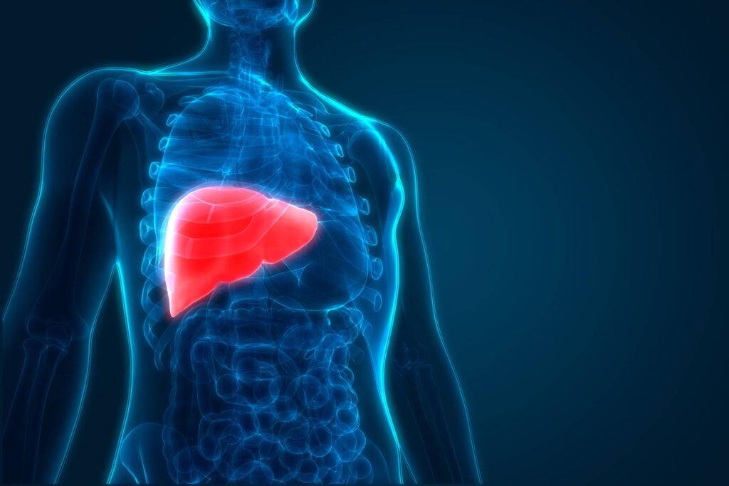 Curcuma: una minaccia per il fegato?